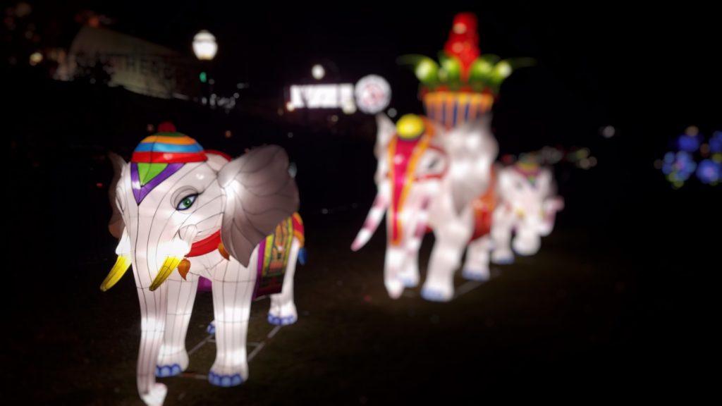 Elephant Christmas lights in Centennial Olympic park