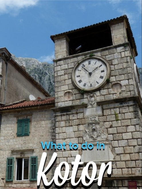 Kotor is the amazing city of cats located in the bay of Kotor in Montenegro! IT's a beautiful coastal town and great for day trips for longer! #Europe #Montenegro #Kotor #Cats