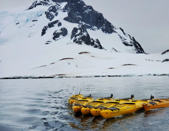 do you need to be fit to go kayaking in antarctica
