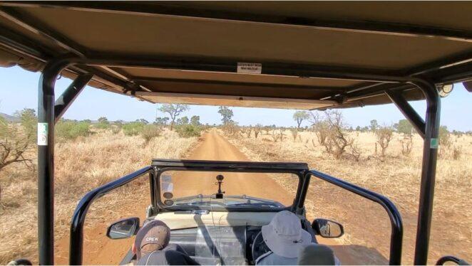 South african safari cost