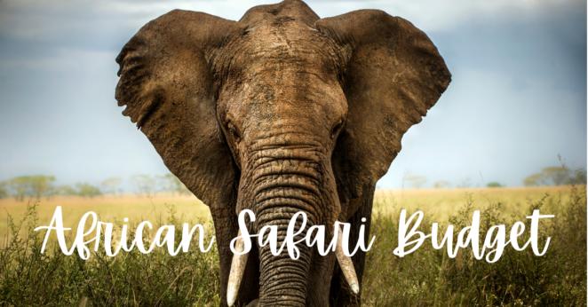 My South African Safari Price Breakdown